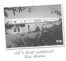 New Zealand's first Kiwi House open to the public on July 17, 1971 - Otorohanga Kiwi House