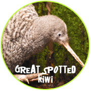 Adopt a Great Spotted Kiwi - Otorohanga Kiwi House